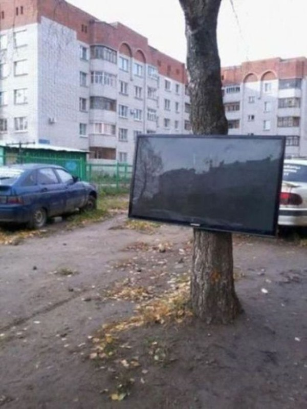 wtf-pictures-18-9