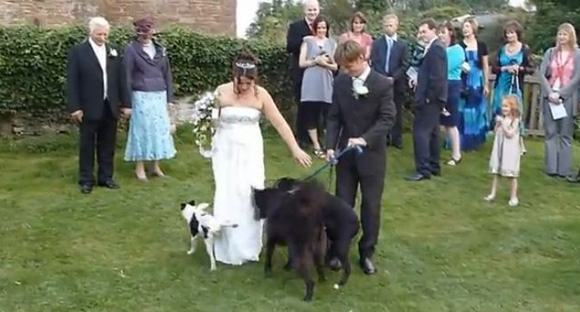 weddings-fail